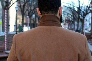 Brown contrasted collar